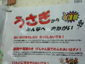 IMG_20130728_101325.jpg